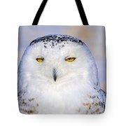 Snowy Owl Portrait Tote Bag