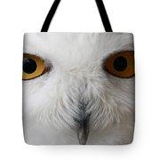 Snowy Owl Stare Tote Bag
