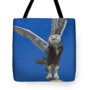 Snowy Owl Taking Flight Tote Bag