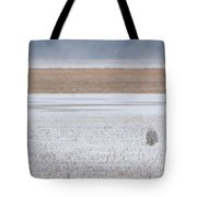 Snowy Owl Two Tote Bag