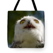Snowy Owl With Big Eyes Tote Bag