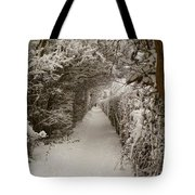 Snowy Path Tote Bag