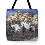 Snowy Ridge Above Bell Canyon - Wasatch Mountains - Utah Tote Bag