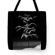 Snowy Sophistication - An Elegant Fledgling Tote Bag