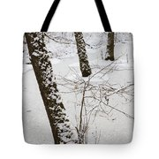 Snowy Trees In Frozen Pond - Winter Forest Tote Bag by Matthias Hauser