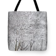 Snowy Trees In Winter Park Tote Bag