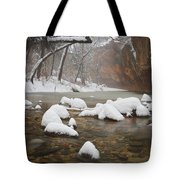 Snowy West Fork Tote Bag by Peter Coskun