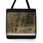Snowy Winter Forest Tote Bag