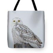 Snowy Wisdom Tote Bag