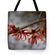 Snowy Witch Hazel Tote Bag