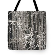 Snowy Woods Tote Bag by Carol Whaley Addassi