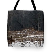 So Came The Autumn And The Winter Tote Bag