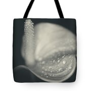 So Much I Don't Understand Tote Bag by Laurie Search