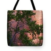 So Zion 3 Tote Bag