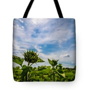 Soaking In The Sun Tote Bag