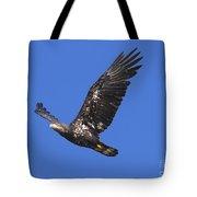 Soar Like An Eagle Tote Bag