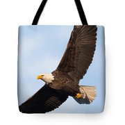 Soaring American Bald Eagle Tote Bag