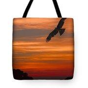 Soaring Bird Of Prey Tote Bag