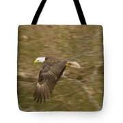 Soaring Over  Tote Bag
