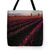 Soaring Spring Colors In Skagit Tote Bag