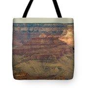 Soaring Through The Canyons Tote Bag
