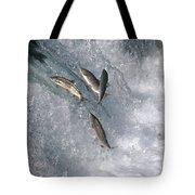 Sockeye Salmon Oncorhynchus Nerka Tote Bag