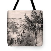 Soft And Stalwart Tote Bag