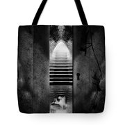 Soft Asylum Tote Bag