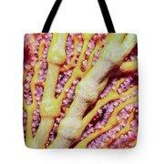 Soft Corals 1 Tote Bag