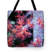 Soft Corals 18 Tote Bag