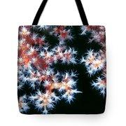 Soft Corals 5 Tote Bag