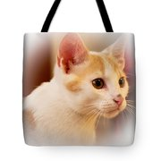 Soft Expression Tote Bag
