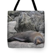 Soft Life Seal Tote Bag