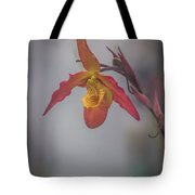 Soft One Style Tote Bag