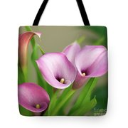 Soft Pink Calla Lilies Tote Bag
