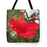 Soft Red Hibiscus With A Natural Garden Background Tote Bag