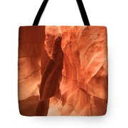 Soft Sculpted Sandstone Walls Tote Bag by Adam Jewell