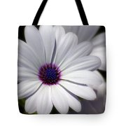 Softee Tote Bag