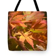 Softly Autumn Tote Bag