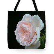 Softly Pink - Rose Tote Bag