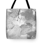 Softness Of Maple Leaves Monochrome Tote Bag