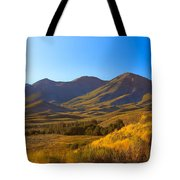 Solider Mountain Shadows Tote Bag