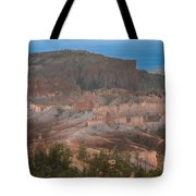Solidly Transparent Tote Bag