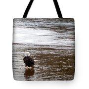 Solitary Eagle Tote Bag