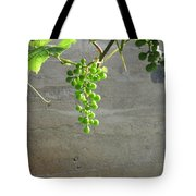 Solitary Grapes Tote Bag by Deb Martin-Webster