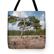 Solitary Tree Amidst Field Of Boulders Tote Bag