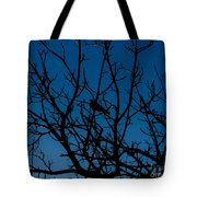 Solitude In The Midst Of Chaos Tote Bag