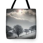 Solitude Of Coldness Tote Bag