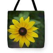 Solo Black-eye Susan Tote Bag