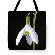 Solo Perfection Tote Bag
